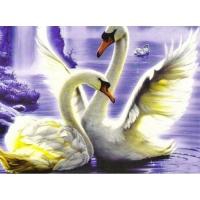 Алмазная мозаика 40х50 Квадратные стразы Лебеди