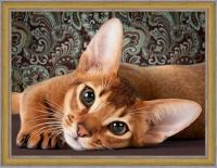 Алмазная мозаика 40х50 Круглые стразы Абиссинская кошка