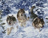 Алмазная мозаика 40х50 Квадратные стразы Бегущие Волки