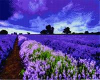Алмазная мозаика 40х50 Квадратные стразы Тучи над лавандовым полем