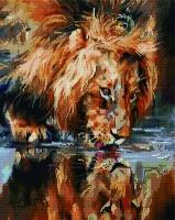 Алмазная мозаика 40х50 Квадратные стразы Львиная жажда