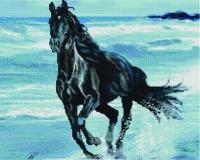 Алмазная мозаика 40х50 Квадратные стразы Ветер свободы