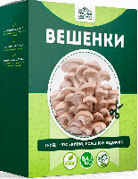 Домашняя грибница Вешенки, набор для выращивания грибов