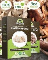 Домашняя грибница Шампиньоны, набор для выращивания грибов