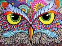 Алмазная мозаика 40х50 Круглые стразы Сова