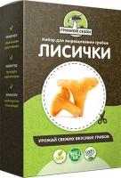 Домашняя грибница Лисички, набор для выращивания грибов